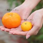 photo1222_01
