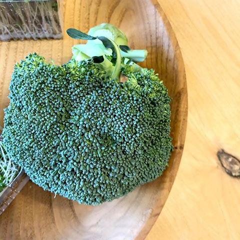 木の皿とブロッコリー